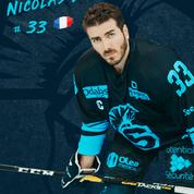 Nicolas DESHAIES