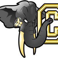 Éléphants de Chambéry